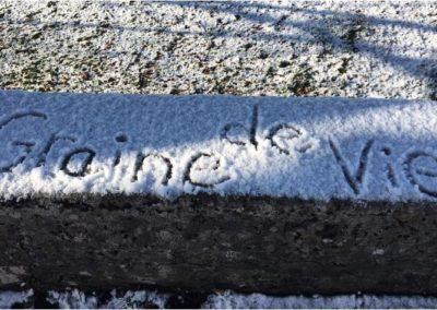 """première neige sur """"Graine de vie"""""""